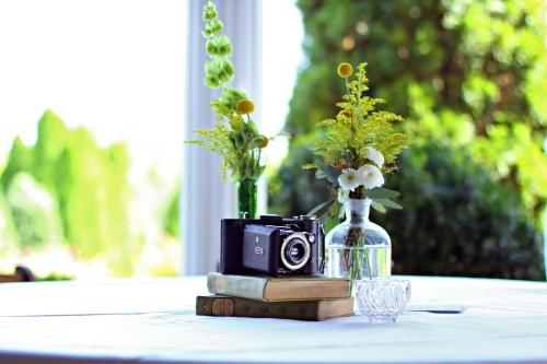 cameras, hourglasses, pearls, teacups, wine bottles, book ends, too